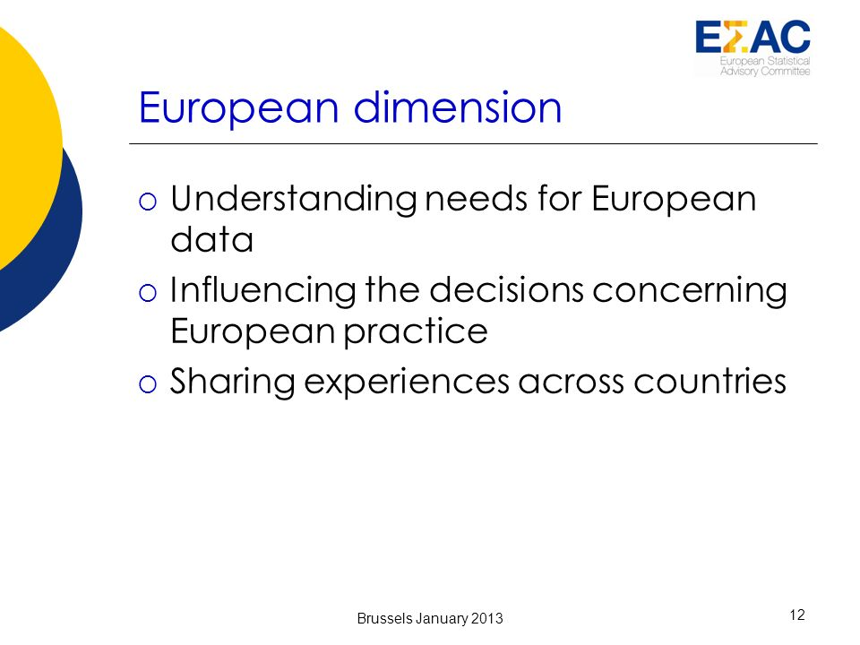 European dimension Understanding needs for European data Influencing the decisions concerning European practice Sharing experiences across countries Brussels January 2013 12