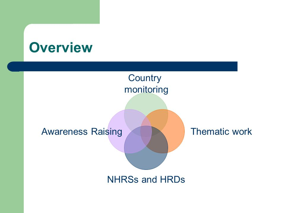 Overview Country monitoring Thematic work NHRSs and HRDs Awareness Raising