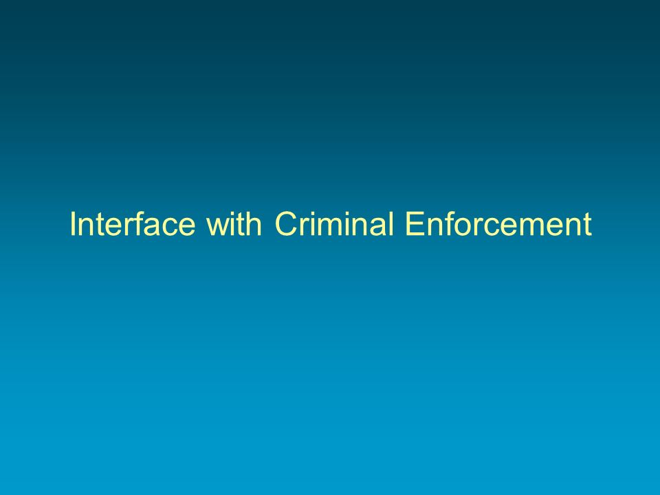 Interface with Criminal Enforcement
