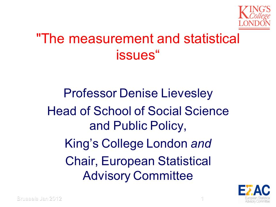 The measurement and statistical issues Professor Denise Lievesley Head of School of Social Science and Public Policy, Kings College London and Chair, European Statistical Advisory Committee 1Brussels Jan 2012