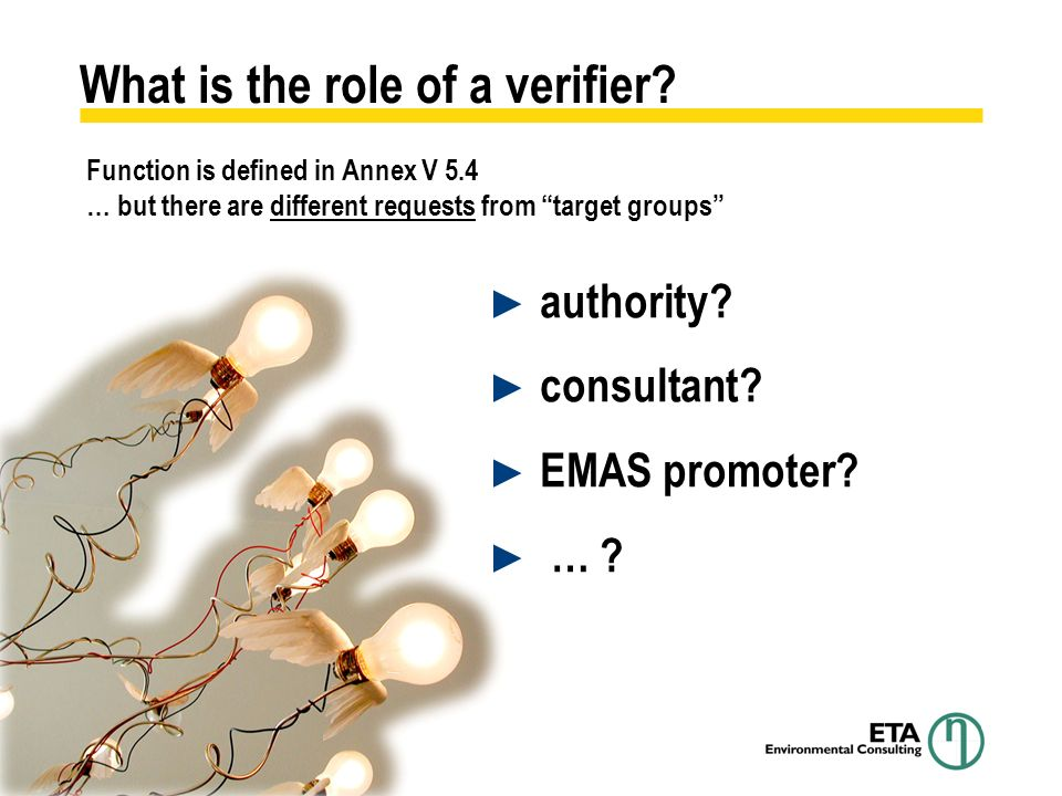 What is the role of a verifier. authority. consultant.