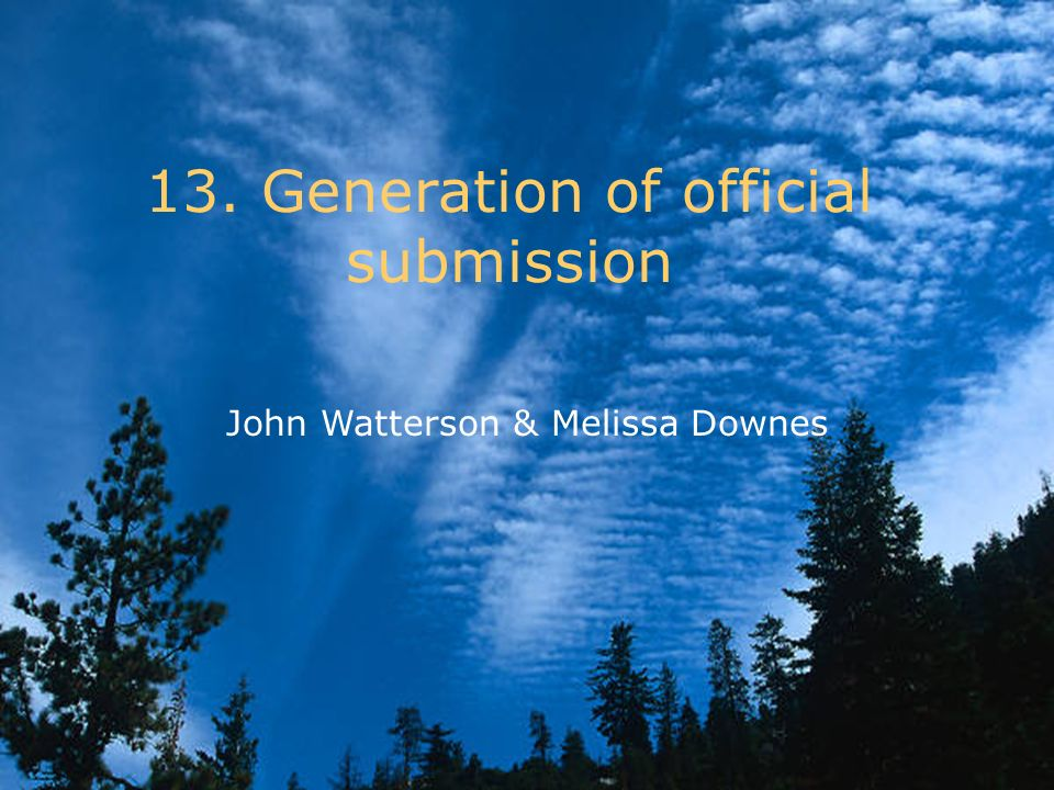 13. Generation of official submission John Watterson & Melissa Downes