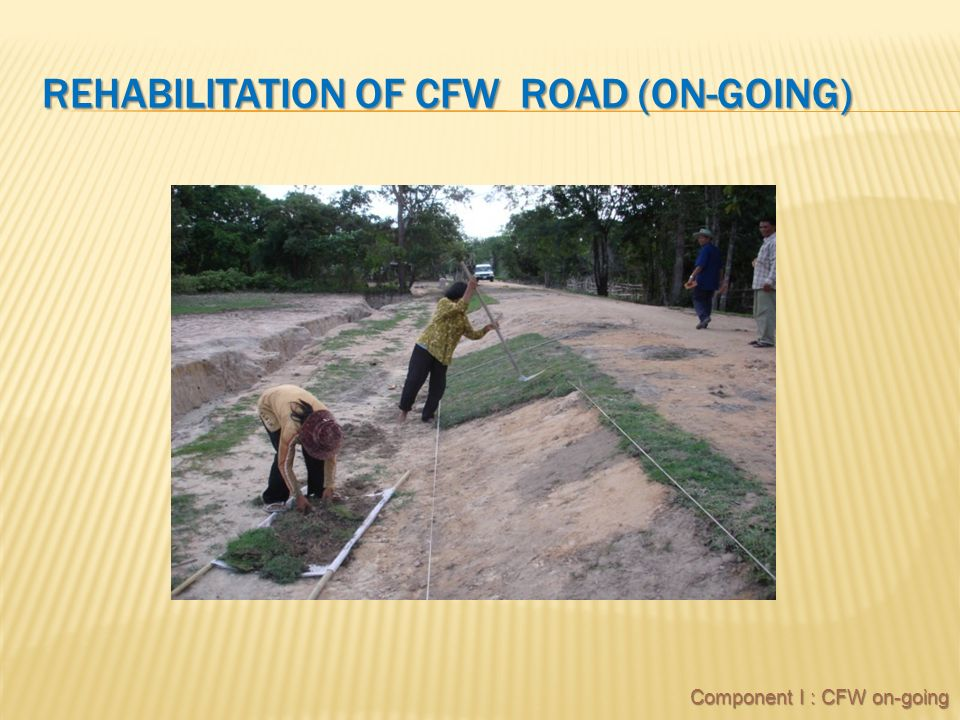 REHABILITATION OF CFW ROAD (ON-GOING) Component I : CFW on-going