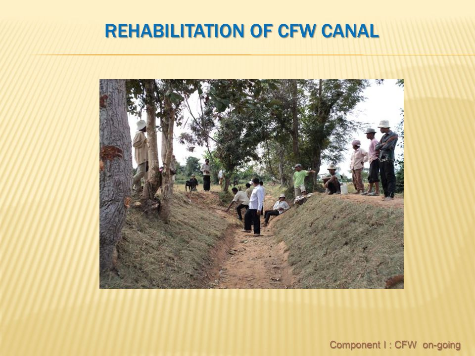 REHABILITATION OF CFW CANAL Component I : CFW on-going