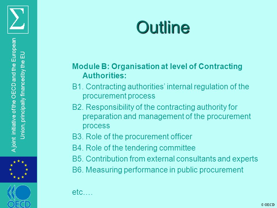 © OECD A joint initiative of the OECD and the European Union, principally financed by the EU Outline Module B: Organisation at level of Contracting Au