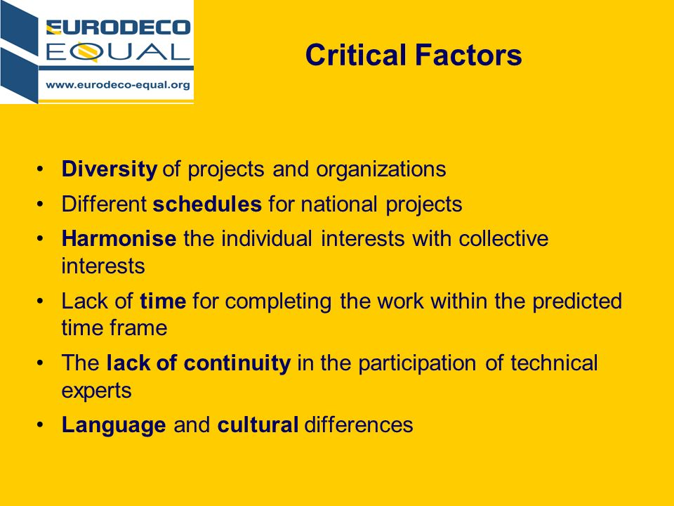 Critical Factors Diversity of projects and organizations Different schedules for national projects Harmonise the individual interests with collective interests Lack of time for completing the work within the predicted time frame The lack of continuity in the participation of technical experts Language and cultural differences