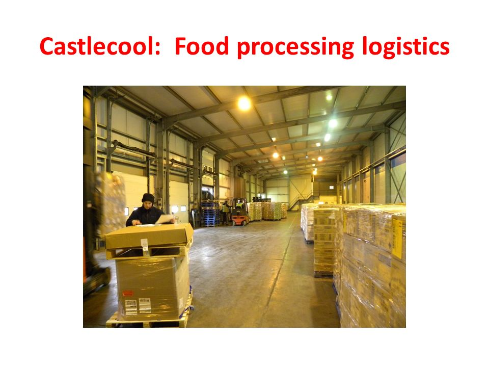 Castlecool: Food processing logistics