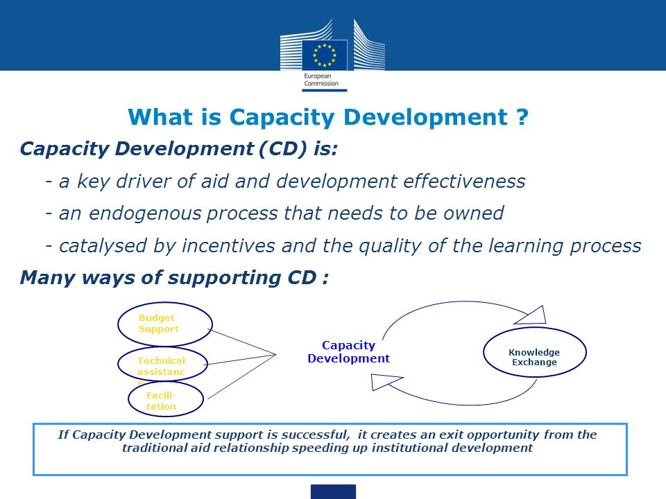 What is Capacity Development .