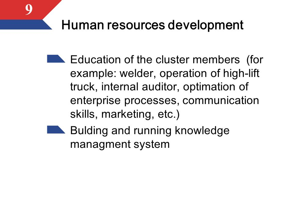 9 Human resources development Education of the cluster members (for example: welder, operation of high-lift truck, internal auditor, optimation of enterprise processes, communication skills, marketing, etc.) Bulding and running knowledge managment system