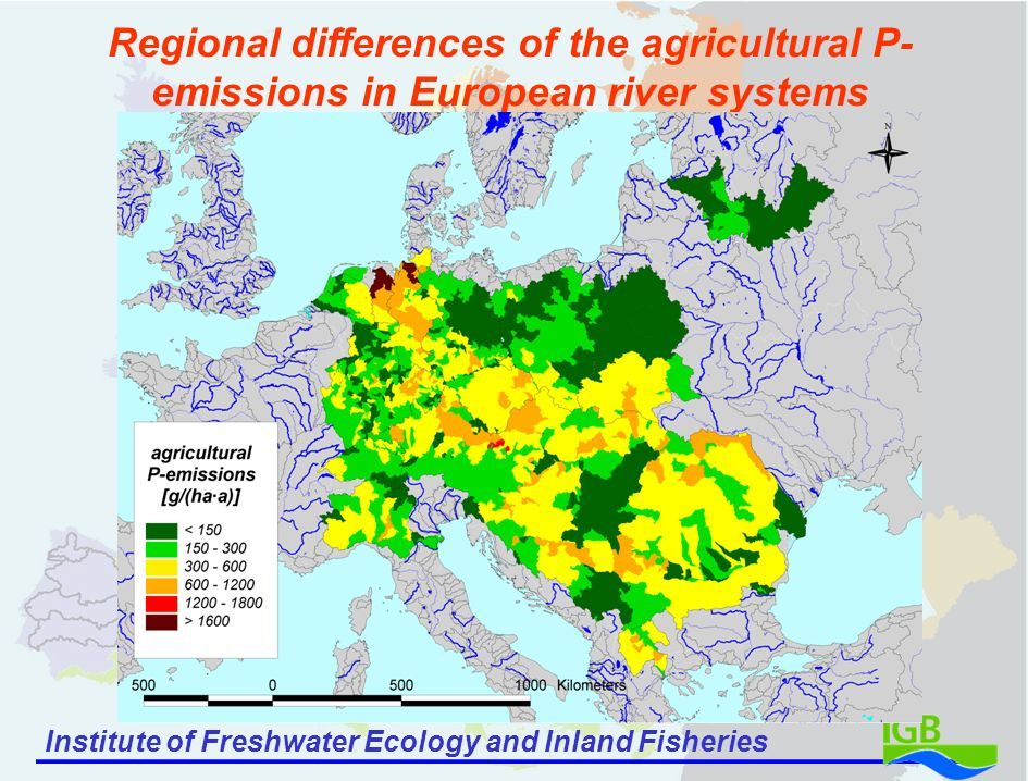 Institute of Freshwater Ecology and Inland Fisheries Regional differences of the agricultural P- emissions in European river systems