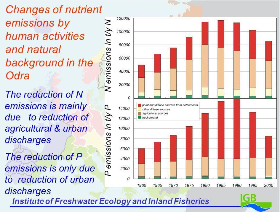 Institute of Freshwater Ecology and Inland Fisheries Changes of nutrient emissions by human activities and natural background in the Odra The reduction of N emissions is mainly due to reduction of agricultural & urban discharges The reduction of P emissions is only due to reduction of urban discharges
