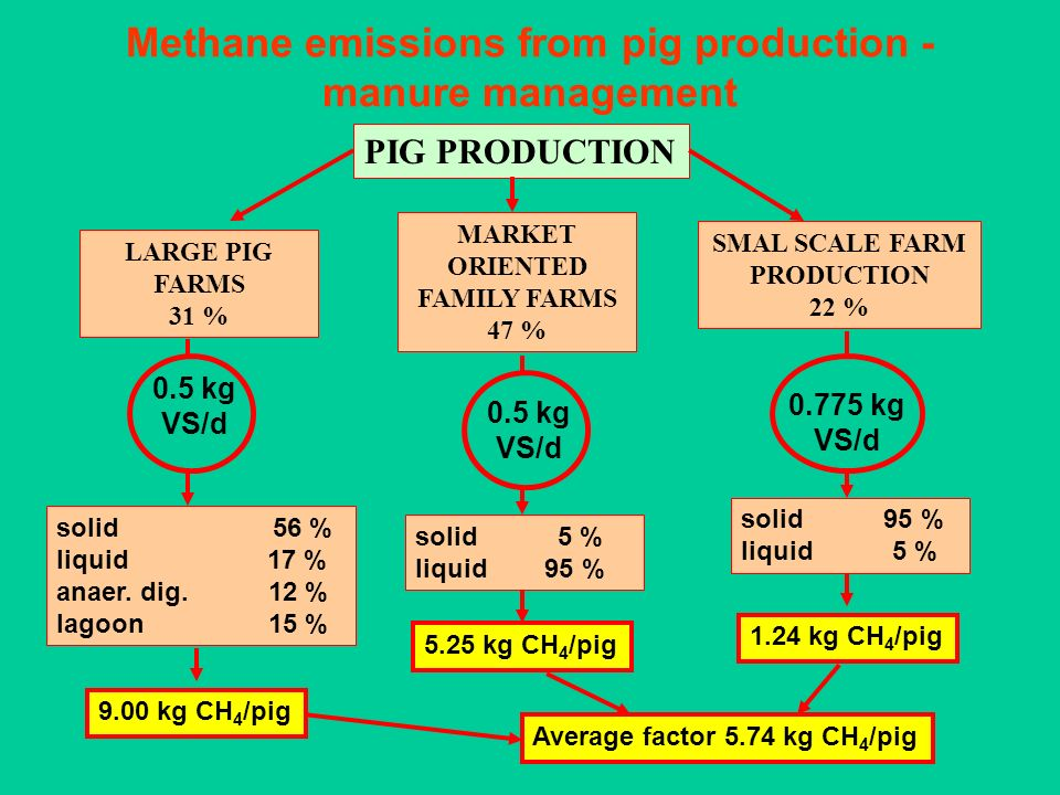 Methane emissions from pig production - manure management PIG PRODUCTION LARGE PIG FARMS 31 % MARKET ORIENTED FAMILY FARMS 47 % SMAL SCALE FARM PRODUC