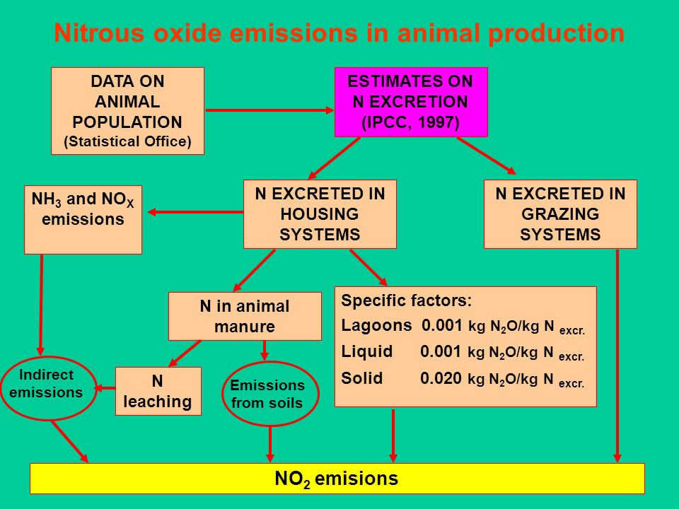 Nitrous oxide emissions in animal production DATA ON ANIMAL POPULATION (Statistical Office) ESTIMATES ON N EXCRETION (IPCC, 1997) N EXCRETED IN GRAZIN