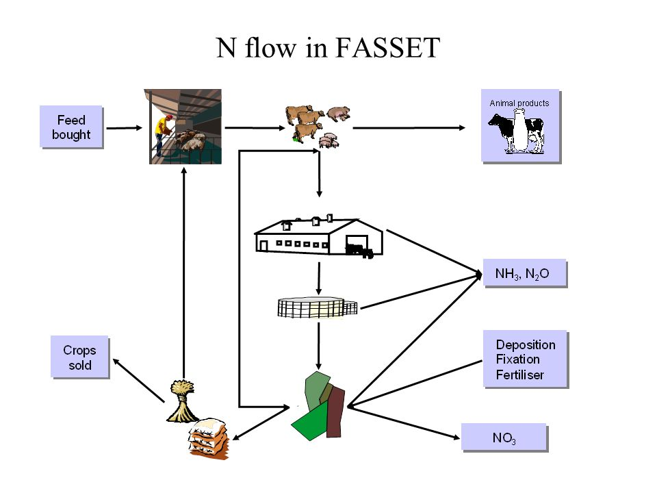 N flow in FASSET