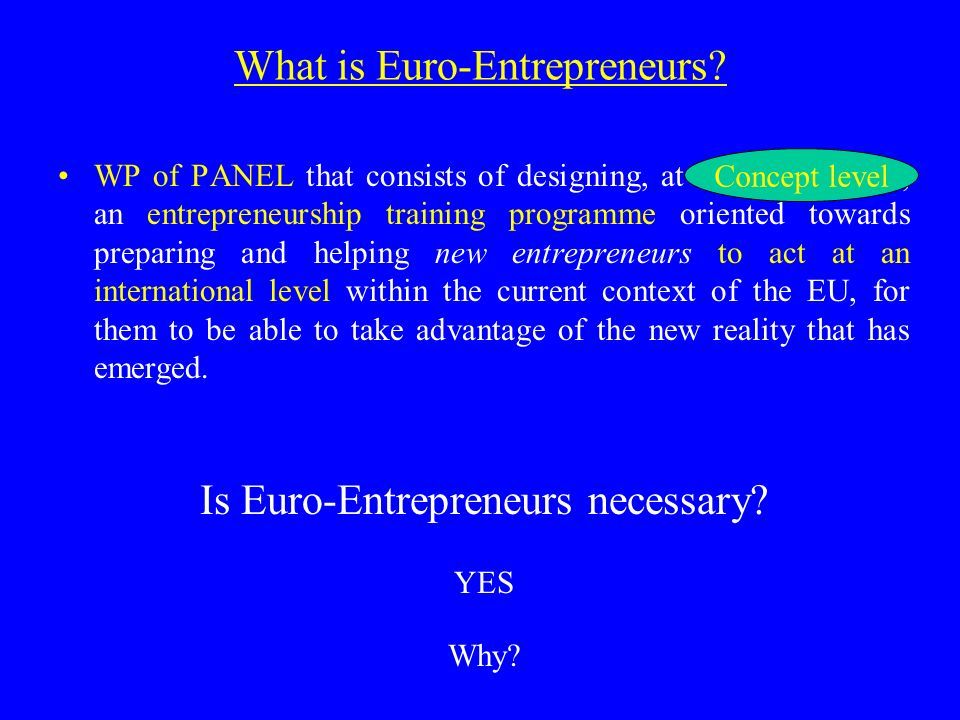 What is Euro-Entrepreneurs.