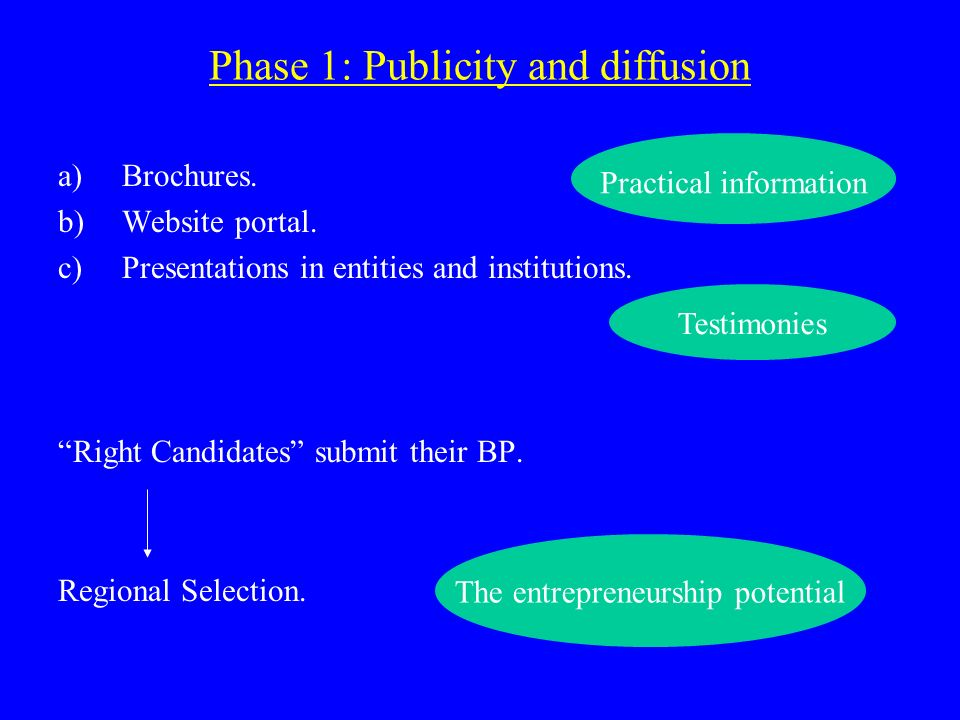 Phase 1: Publicity and diffusion a)Brochures. b)Website portal.