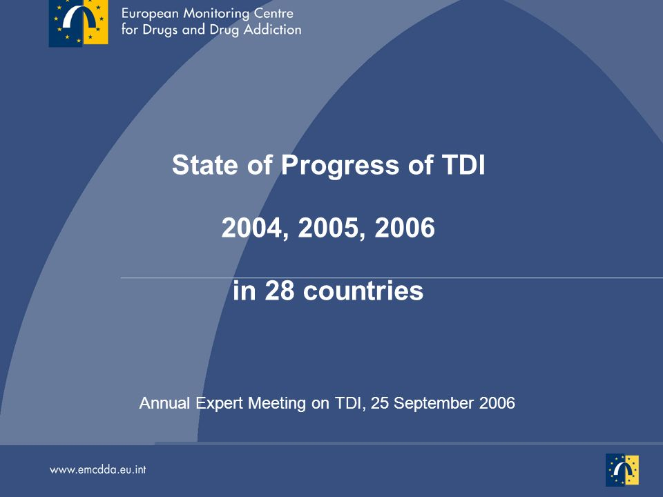 Annual Expert Meeting on TDI, 25 September 2006 State of Progress of TDI 2004, 2005, 2006 in 28 countries