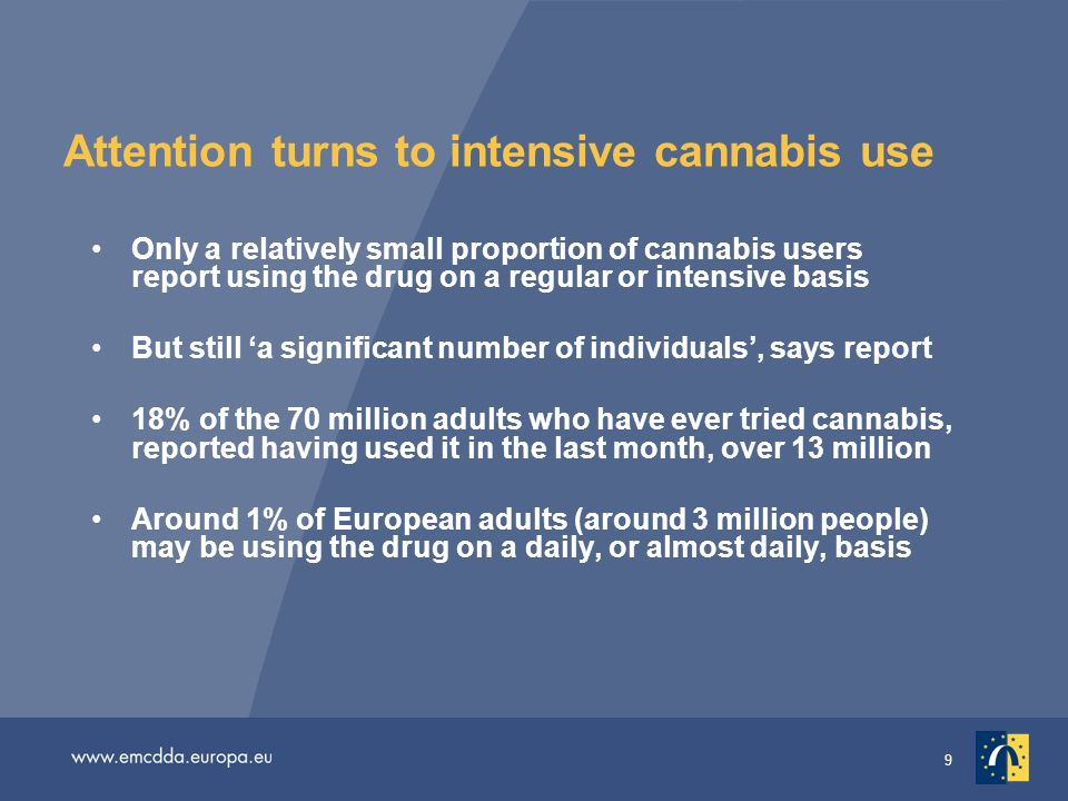 9 Attention turns to intensive cannabis use Only a relatively small proportion of cannabis users report using the drug on a regular or intensive basis But still a significant number of individuals, says report 18% of the 70 million adults who have ever tried cannabis, reported having used it in the last month, over 13 million Around 1% of European adults (around 3 million people) may be using the drug on a daily, or almost daily, basis