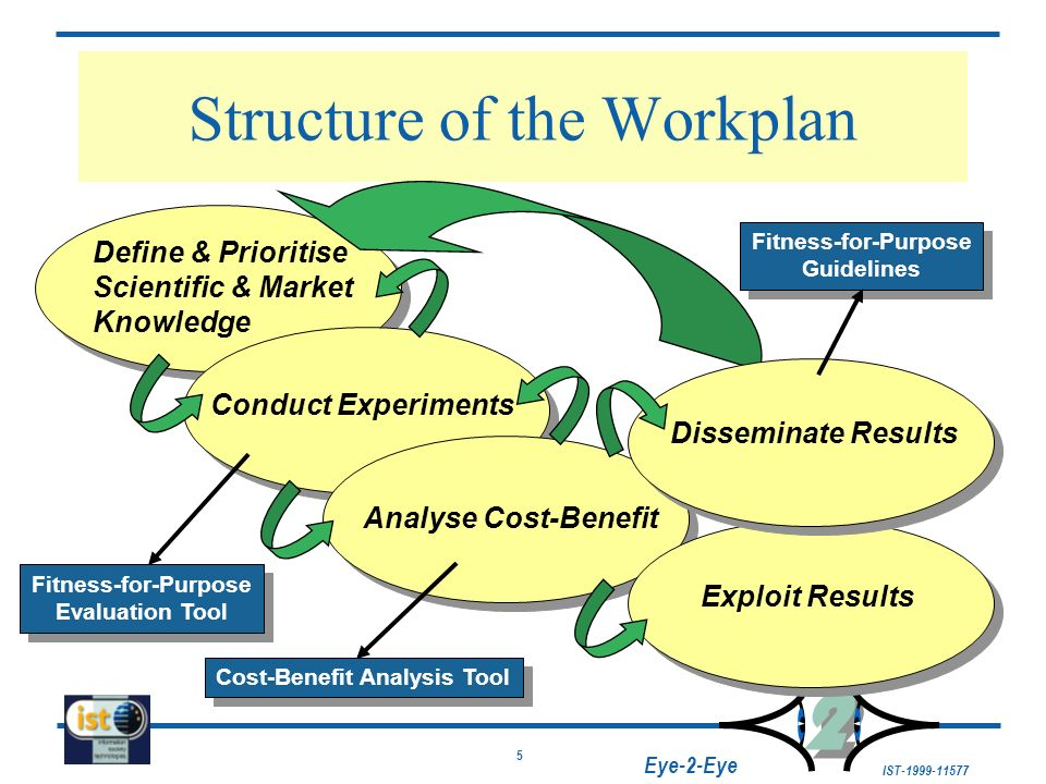5 IST-1999-11577 2 2 Eye-2-Eye Structure of the Workplan Define & Prioritise Scientific & Market Knowledge Conduct Experiments Analyse Cost-Benefit Ex