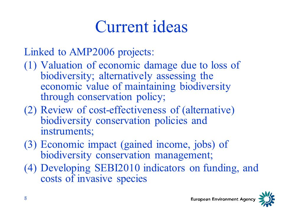 8 Current ideas Linked to AMP2006 projects: (1)Valuation of economic damage due to loss of biodiversity; alternatively assessing the economic value of maintaining biodiversity through conservation policy; (2)Review of cost-effectiveness of (alternative) biodiversity conservation policies and instruments; (3)Economic impact (gained income, jobs) of biodiversity conservation management; (4)Developing SEBI2010 indicators on funding, and costs of invasive species