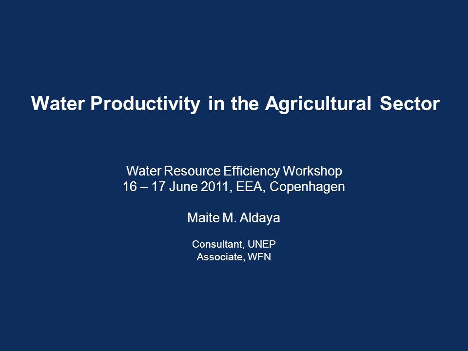 Water Productivity in the Agricultural Sector Water Resource Efficiency Workshop 16 – 17 June 2011, EEA, Copenhagen Maite M.