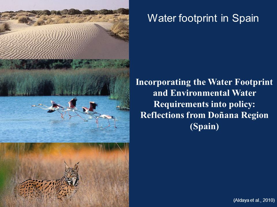 Incorporating the Water Footprint and Environmental Water Requirements into policy: Reflections from Doñana Region (Spain) Water footprint in Spain (Aldaya et al., 2010)