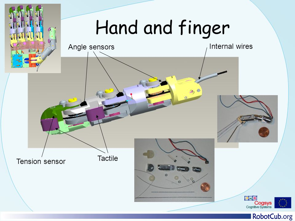 Hand and finger Angle sensors Tension sensor Tactile Internal wires