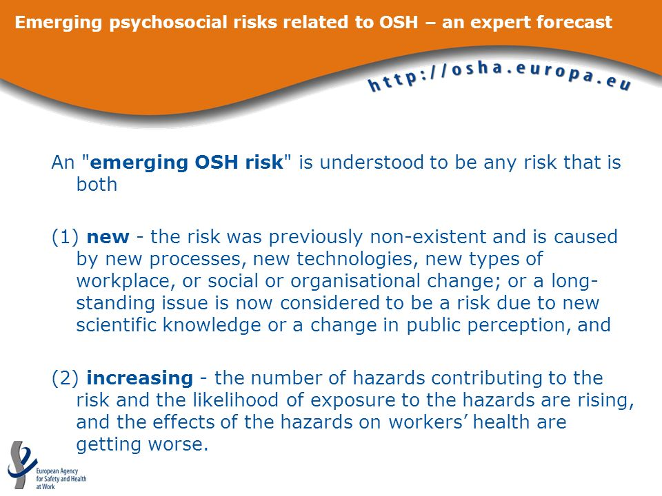 Emerging psychosocial risks related to OSH – an expert forecast Workshop on emerging psychosocial risks (Brussels, 8-9 April 2008) to discuss and consolidate the results of the expert forecast to explore concrete, practical ways to tackle the psychosocial emerging risks identified in this forecast to stimulate EU research networking activities related to the priorities identified