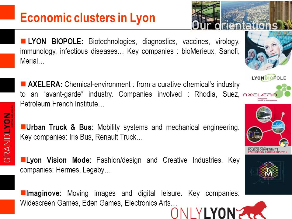 6 Economic clusters in Lyon LYON BIOPOLE: Biotechnologies, diagnostics, vaccines, virology, immunology, infectious diseases… Key companies : bioMerieux, Sanofi, Merial… AXELERA: Chemical-environment : from a curative chemicals industry to an avant-garde industry.