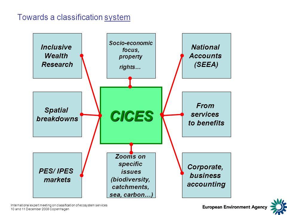International expert meeting on classification of ecosystem services 10 and 11 December 2008 Copenhagen Towards a classification system CICES From ser