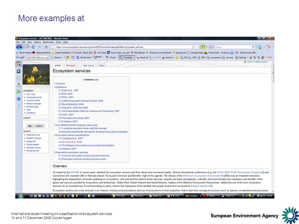 International expert meeting on classification of ecosystem services 10 and 11 December 2008 Copenhagen More examples at