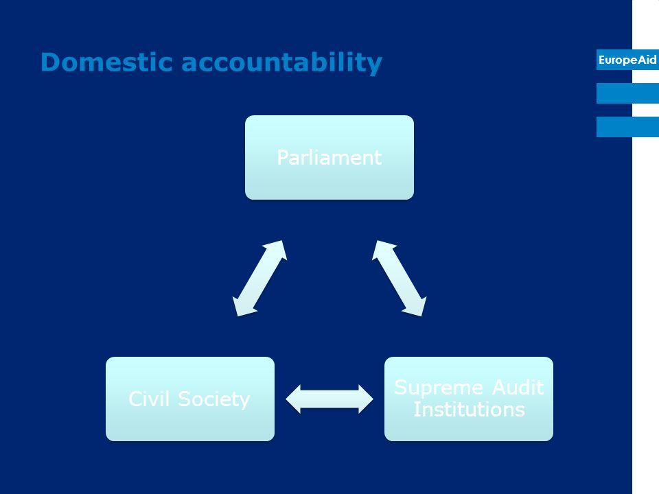 EuropeAid Domestic accountability Parliament Supreme Audit Institutions Civil Society