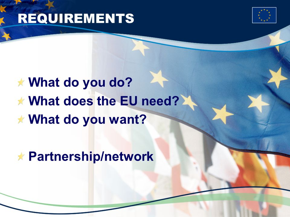 REQUIREMENTS What do you do What does the EU need What do you want Partnership/network
