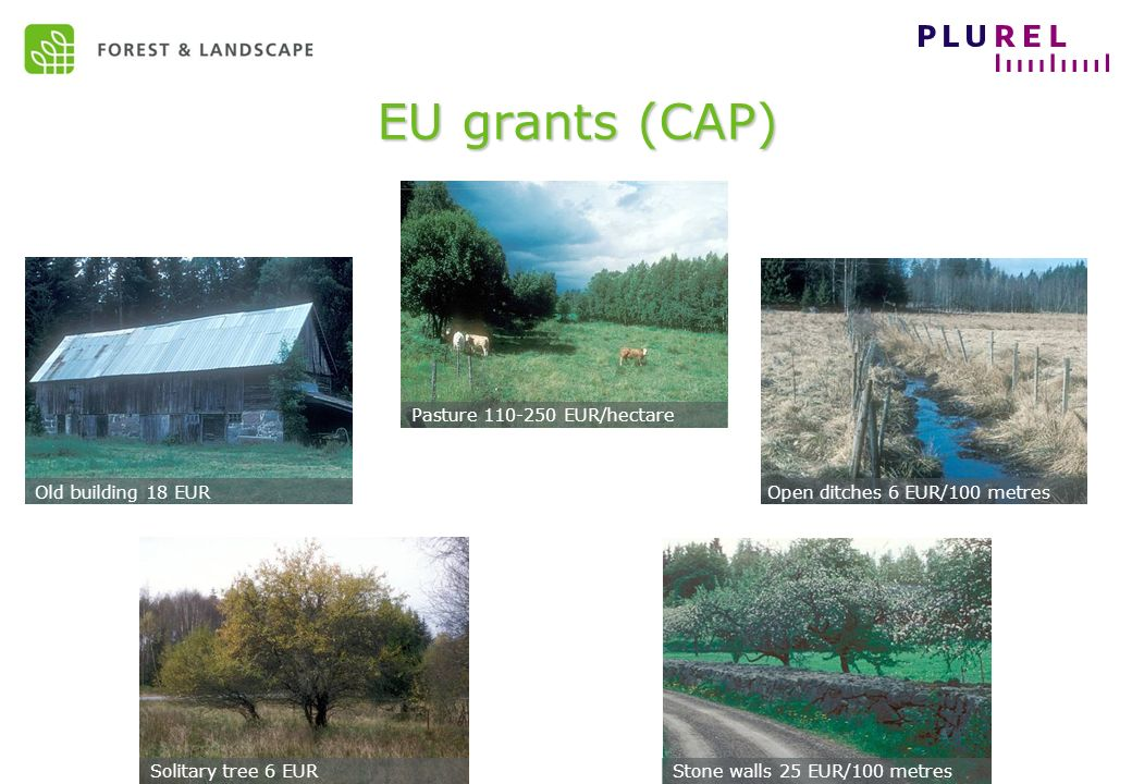 EC Sustainable development – May 2009 EU grants (CAP) Pasture 110-250 EUR/hectare Solitary tree 6 EUR Old building 18 EUROpen ditches 6 EUR/100 metres Stone walls 25 EUR/100 metres
