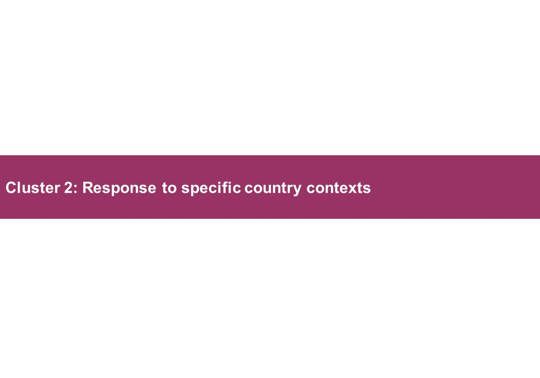 Cluster 2: Response to specific country contexts