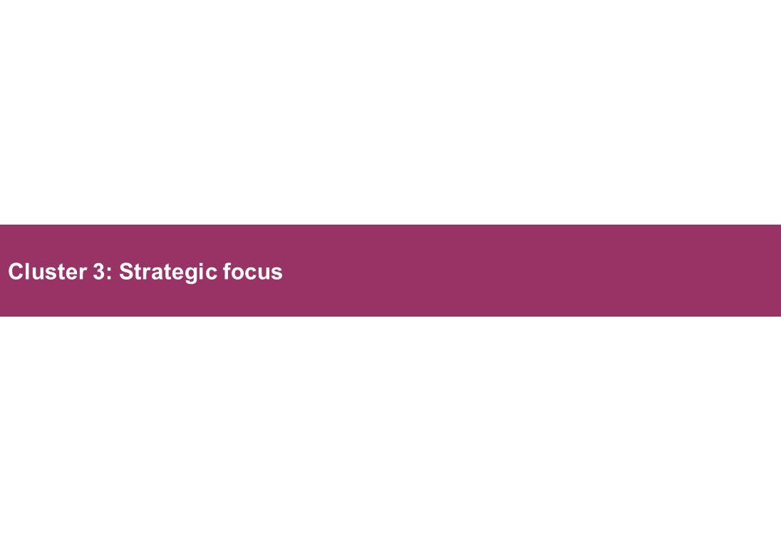 Cluster 3: Strategic focus