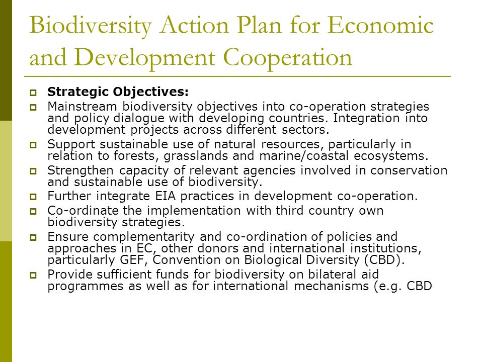 Biodiversity Action Plan for Economic and Development Cooperation Strategic Objectives: Mainstream biodiversity objectives into co-operation strategies and policy dialogue with developing countries.