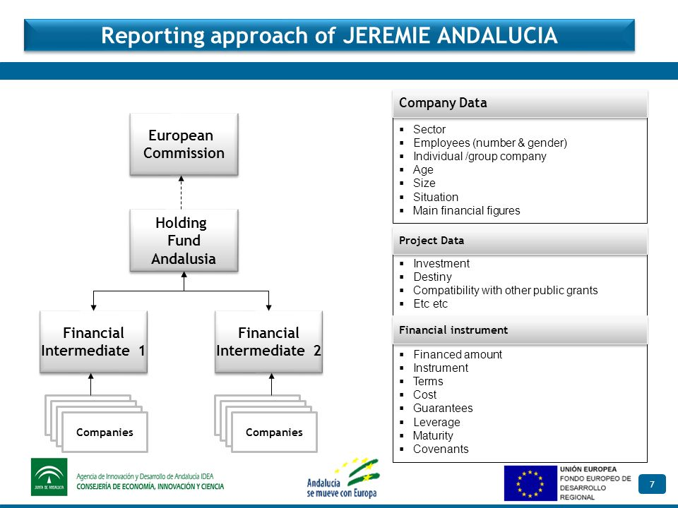 7 Reporting approach of JEREMIE ANDALUCIA Investment Destiny Compatibility with other public grants Etc etc Project Data Sector Employees (number & gender) Individual /group company Age Size Situation Main financial figures Company Data Financed amount Instrument Terms Cost Guarantees Leverage Maturity Covenants Financial instrument European Commission European Commission Holding Fund Andalusia Holding Fund Andalusia Financial Intermediate 1 Financial Intermediate 1 Companies Financial Intermediate 2 Financial Intermediate 2 Companies