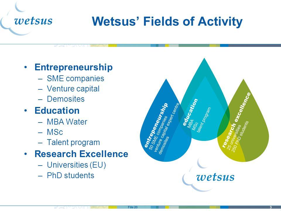 3File 20 Wetsus Fields of Activity Entrepreneurship –SME companies –Venture capital –Demosites Education –MBA Water –MSc –Talent program Research Exce