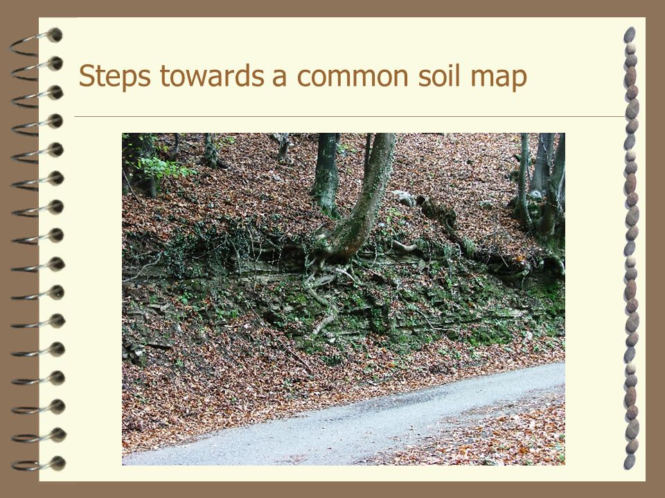 Steps towards a common soil map