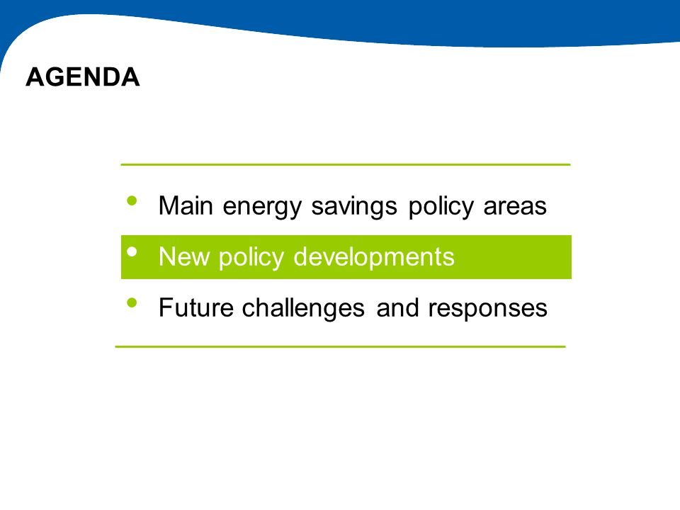 AGENDA Main energy savings policy areas New policy developments Future challenges and responses