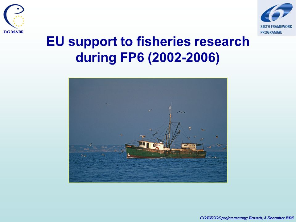 DG MARE COBECOS project meeting; Brussels, 3 December 2008 EU support to fisheries research during FP6 (2002-2006)