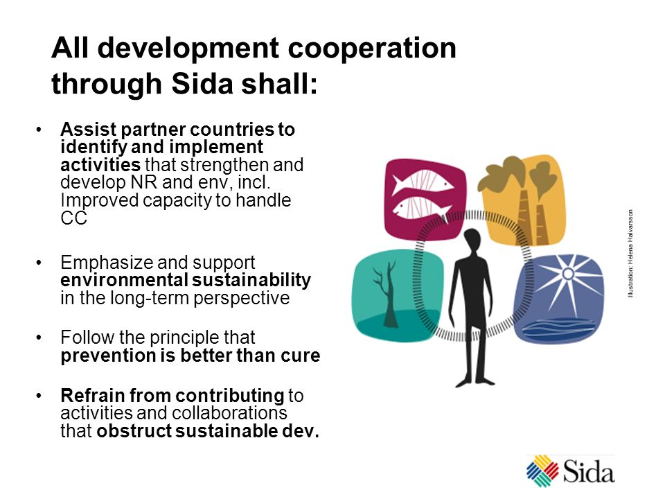 All development cooperation through Sida shall: Assist partner countries to identify and implement activities that strengthen and develop NR and env,