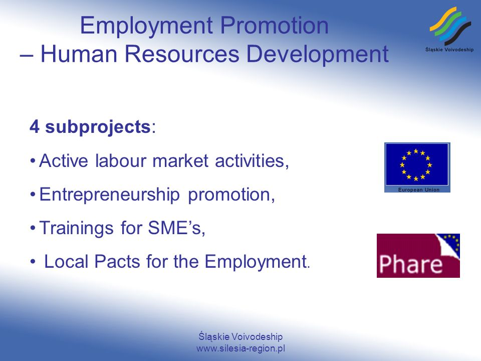 Śląskie Voivodeship www.silesia-region.pl Employment Promotion – Human Resources Development 4 subprojects: Active labour market activities, Entrepreneurship promotion, Trainings for SMEs, Local Pacts for the Employment.