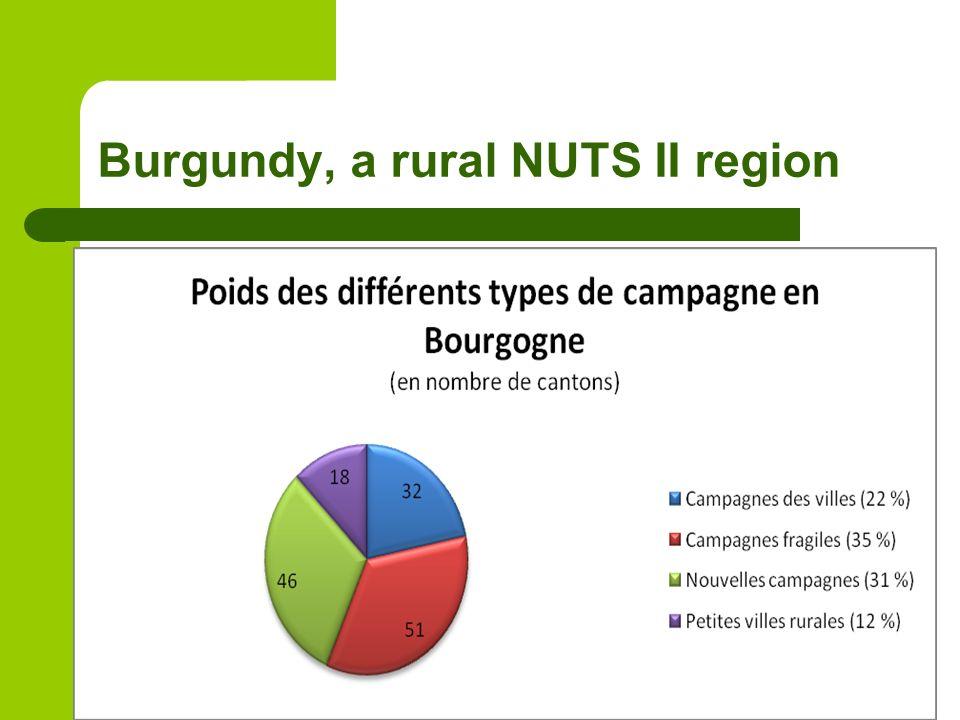 Burgundy, a rural NUTS II region