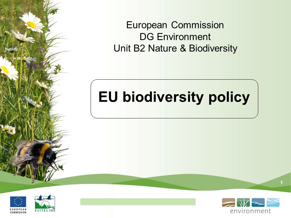 1 EU biodiversity policy European Commission DG Environment Unit B2 Nature & Biodiversity