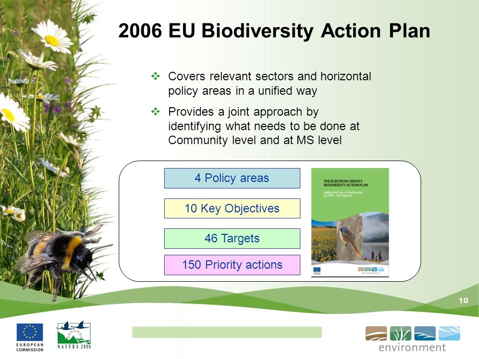 10 2006 EU Biodiversity Action Plan Covers relevant sectors and horizontal policy areas in a unified way Provides a joint approach by identifying what