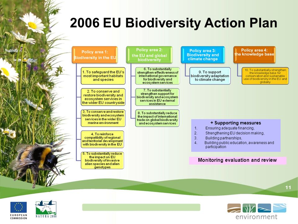 11 2006 EU Biodiversity Action Plan + Supporting measures 1.Ensuring adequate financing, 2.Strengthening EU decision making, 3.Building partnerships,