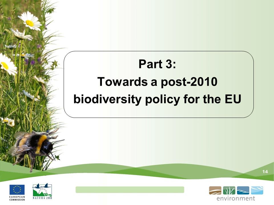 14 Part 3: Towards a post-2010 biodiversity policy for the EU