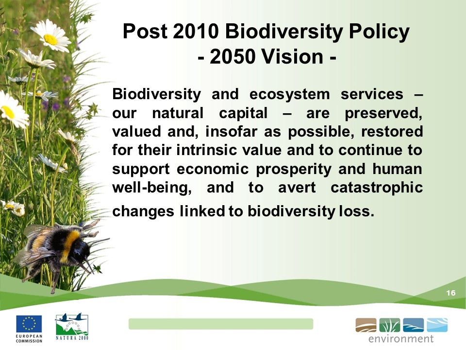 16 Post 2010 Biodiversity Policy - 2050 Vision - Biodiversity and ecosystem services – our natural capital – are preserved, valued and, insofar as pos